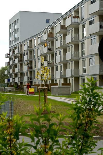 OIKOS 01 Front View